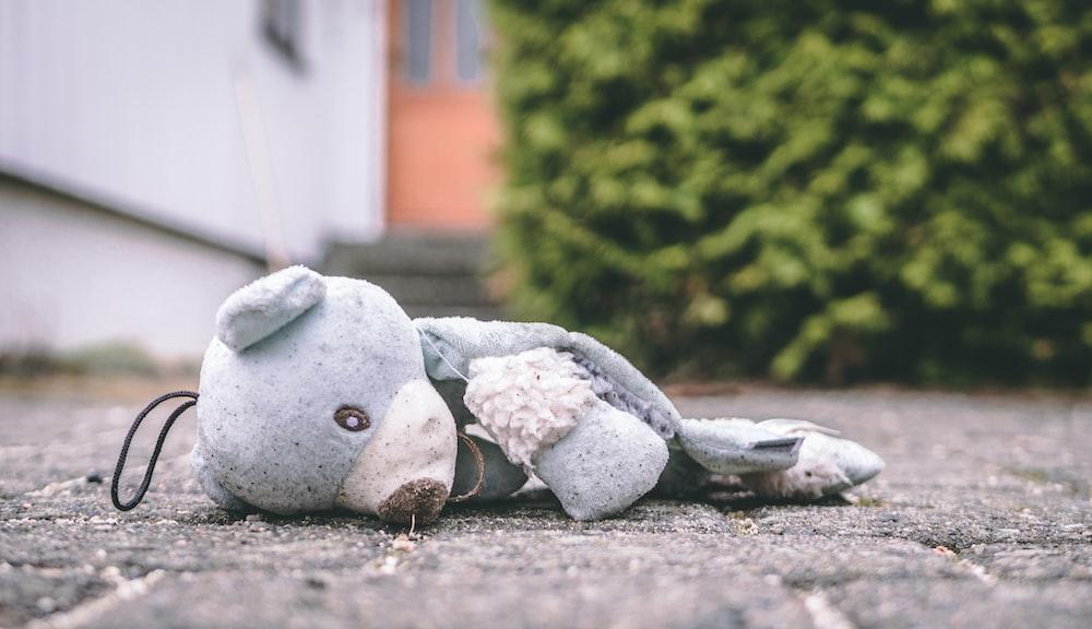 photo of bear plush toy on pavement