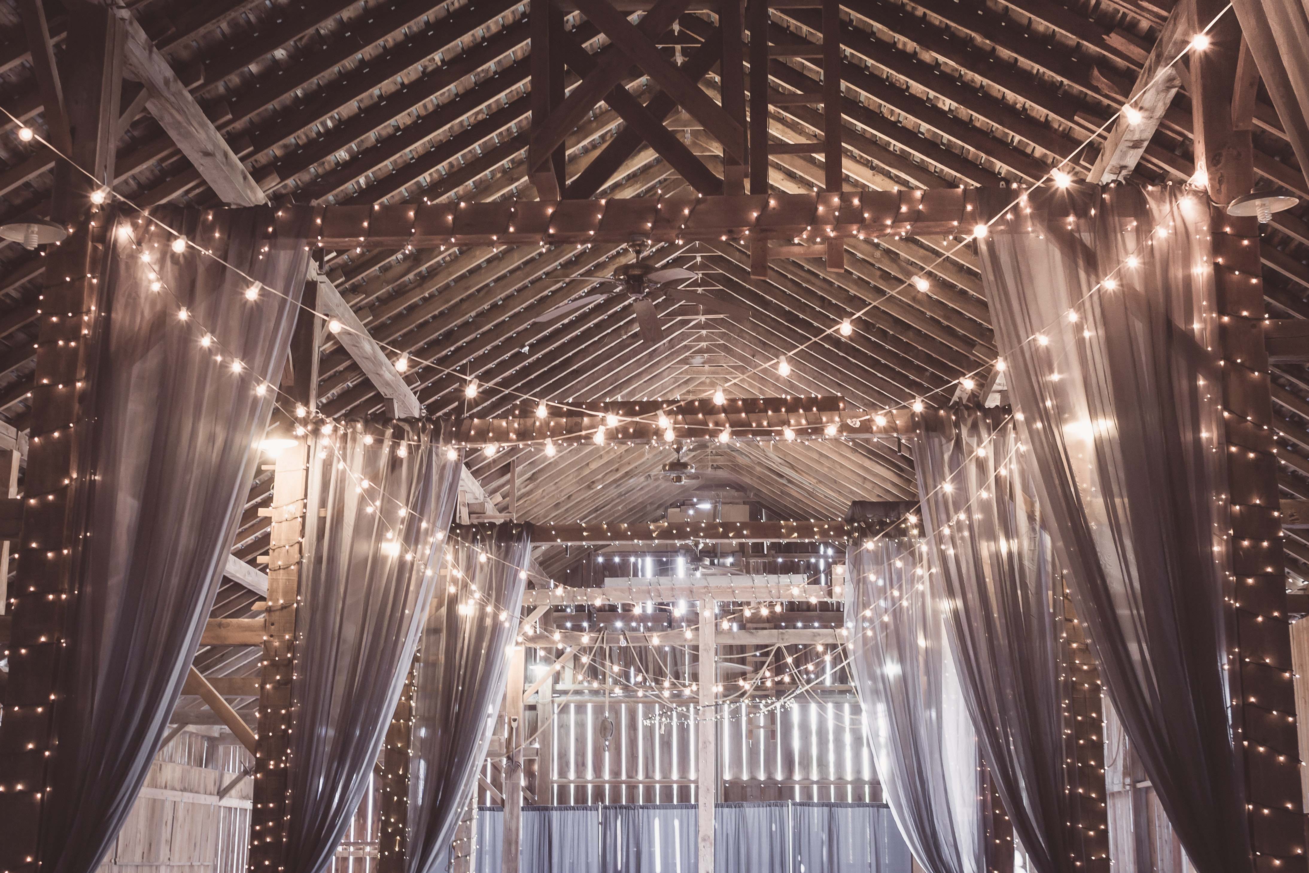 string lights in gazebo