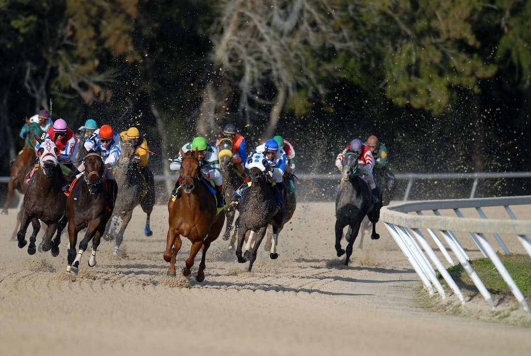 Is horse betting lucrative?
