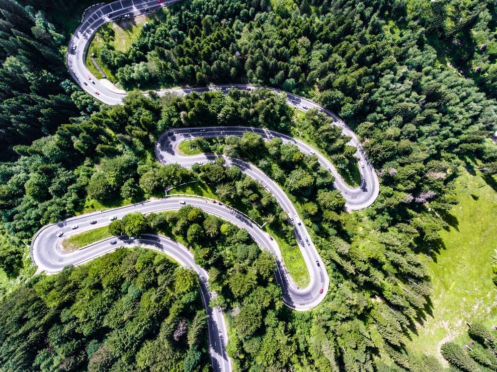 aerial view of zig zag road surrounded by trees