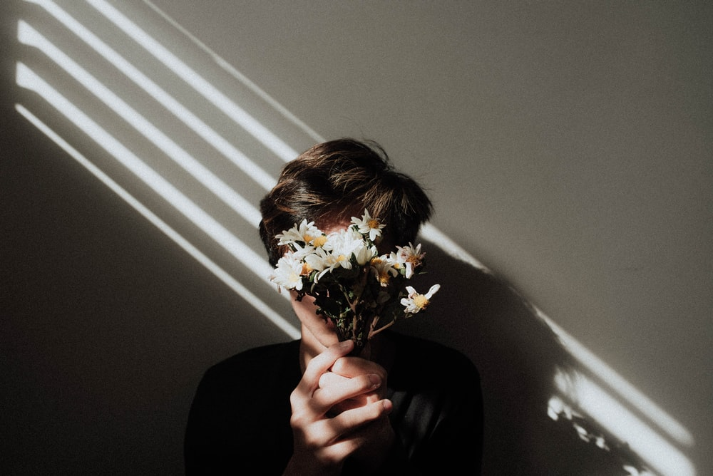 person holding white daisy flowers