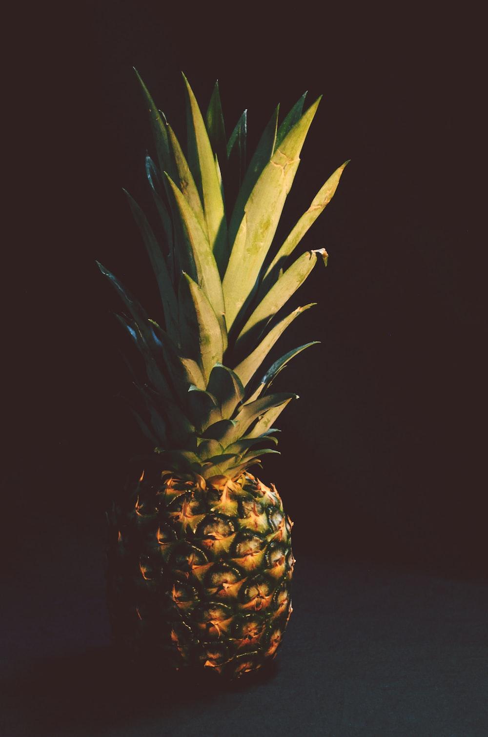 photo of pineapple fruit