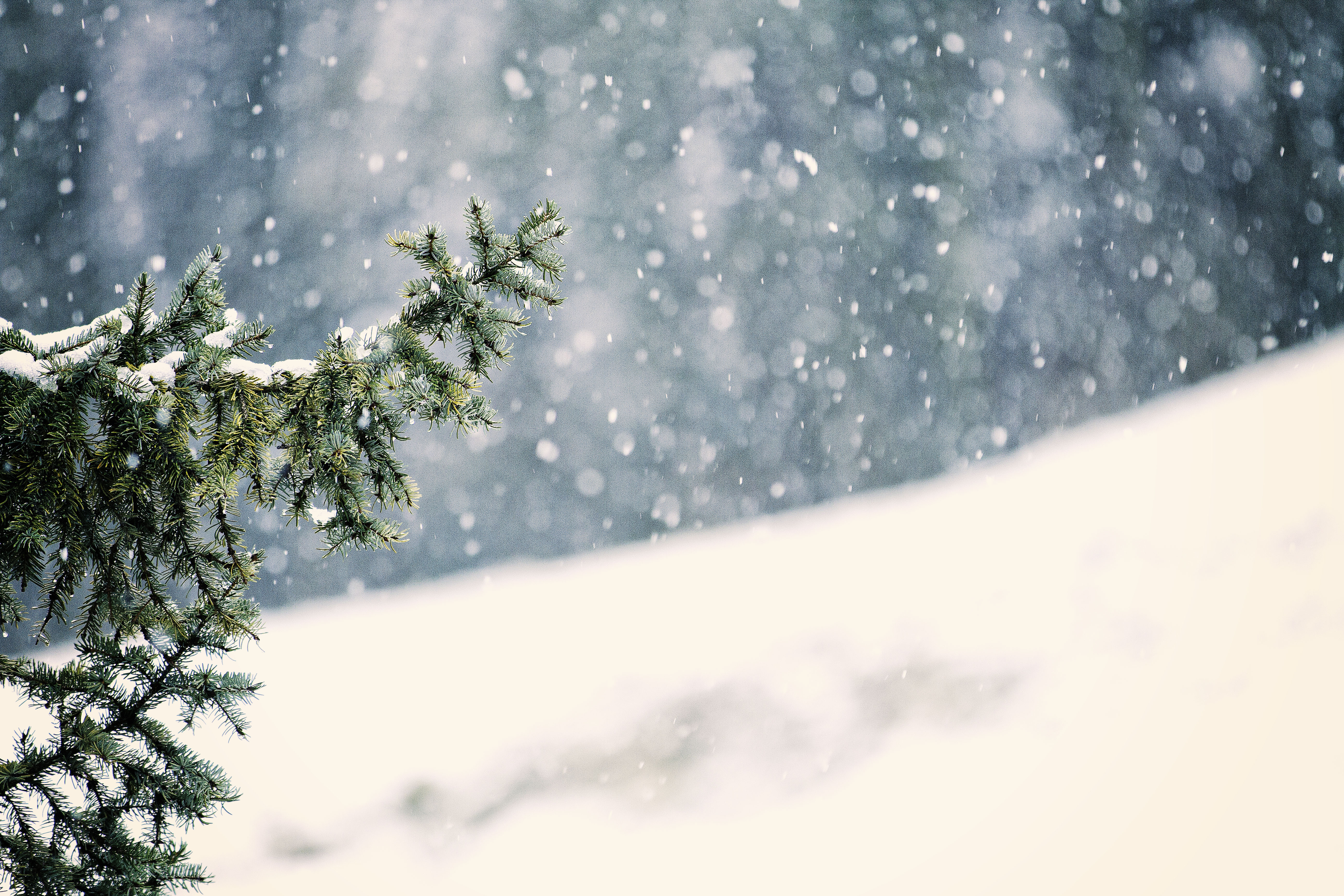 snowing pictures