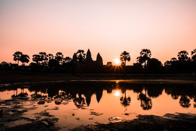 silhouette of trees cambodia zoom background