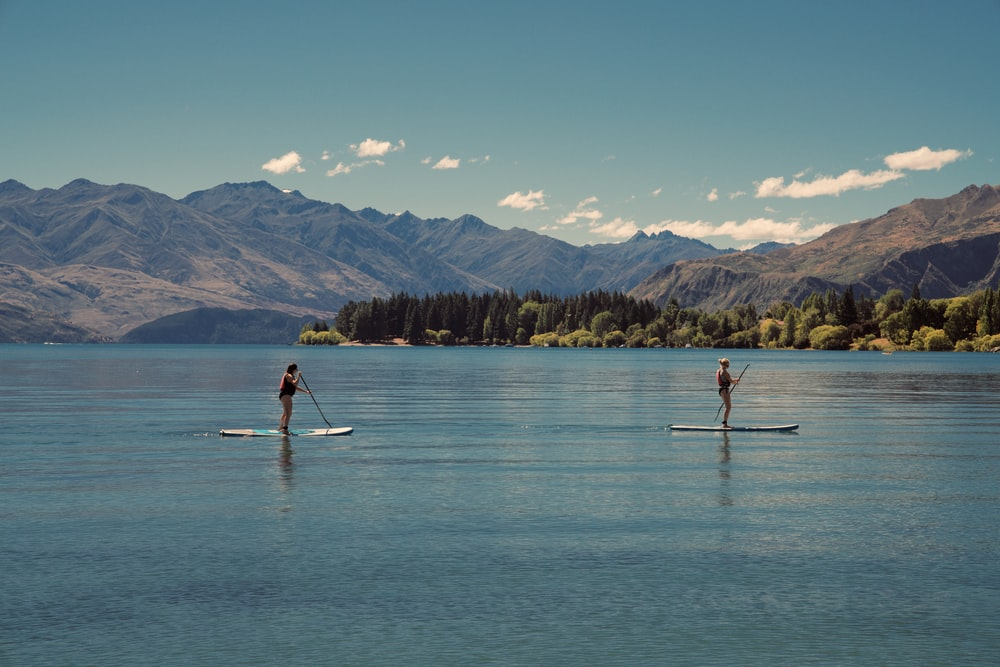 two person riding on paddle boards during daytime