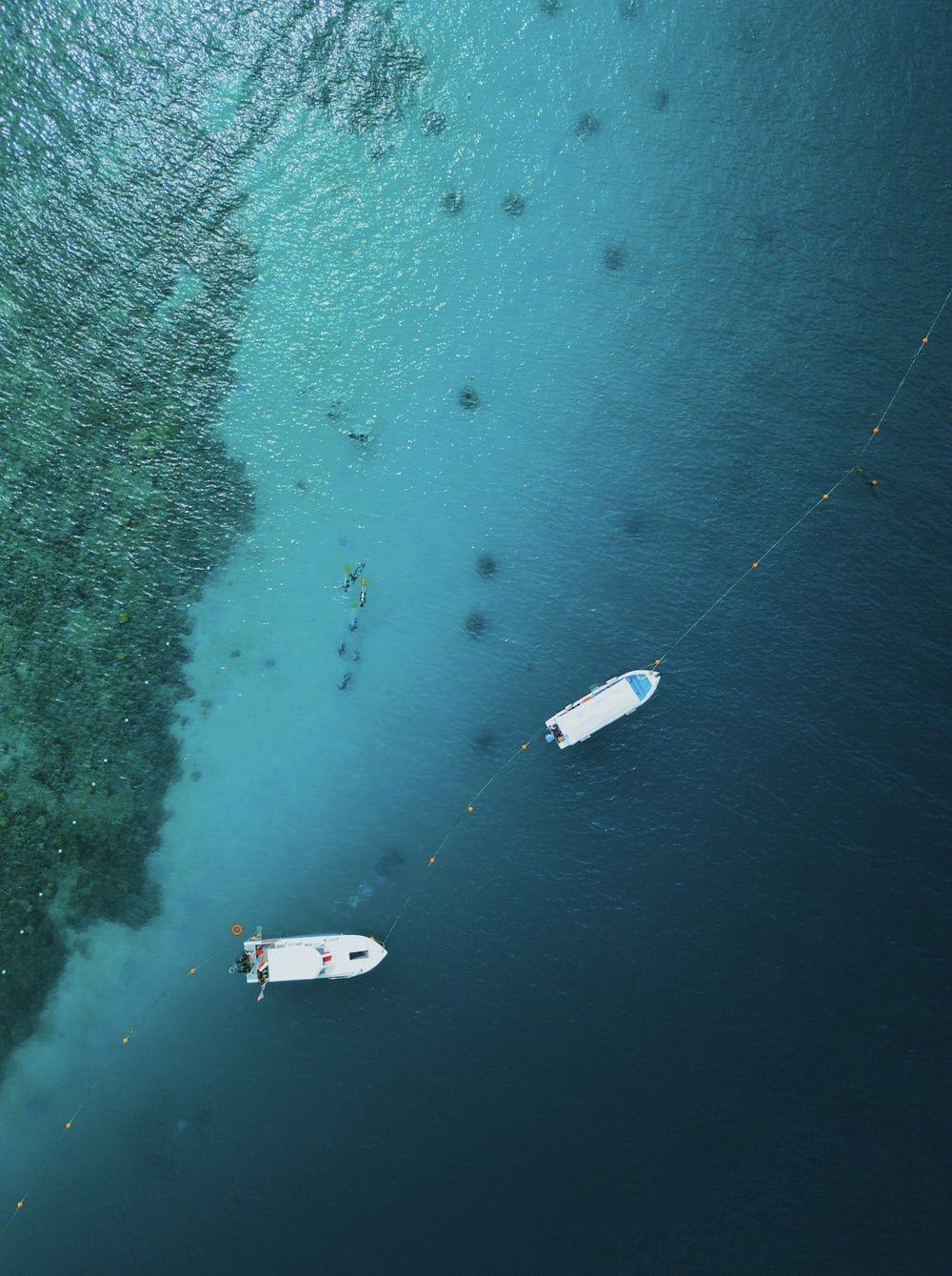 aerial photography of two white motor boats on calm body of sea