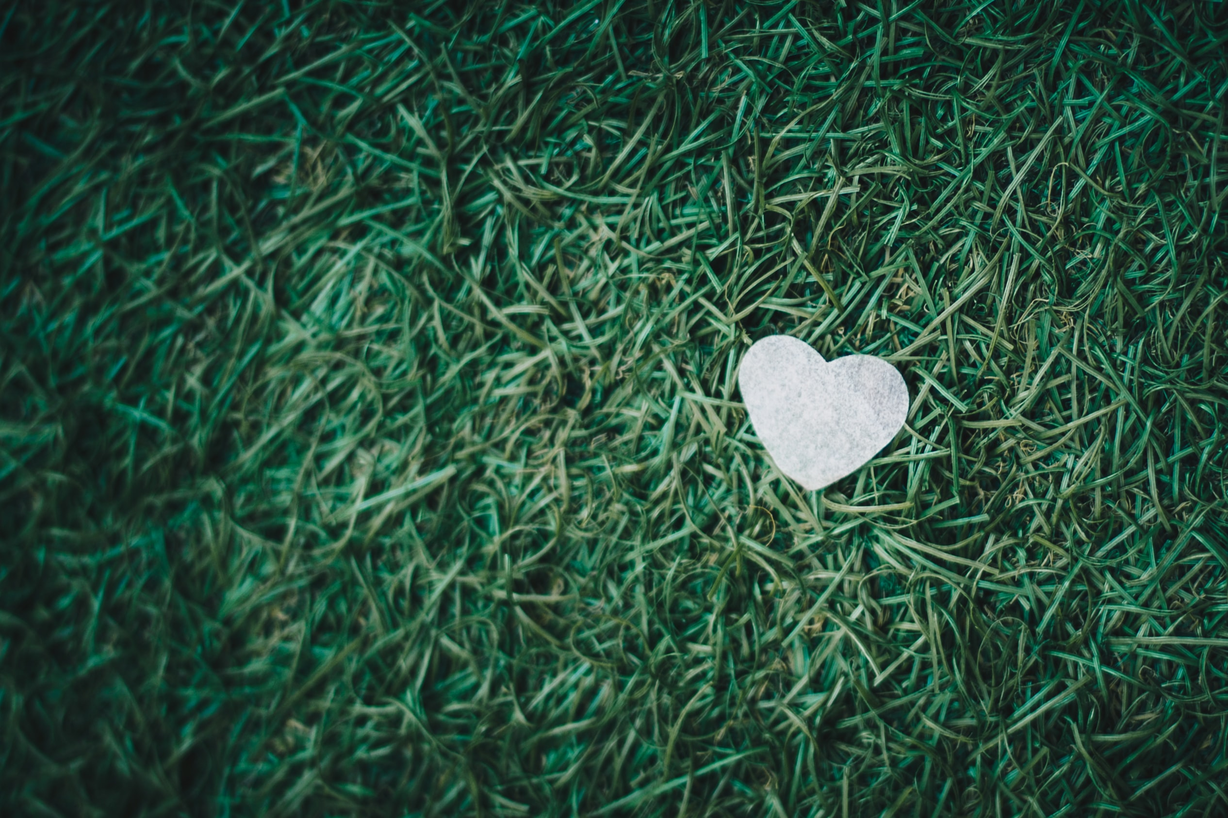 gray heart decor on green grass