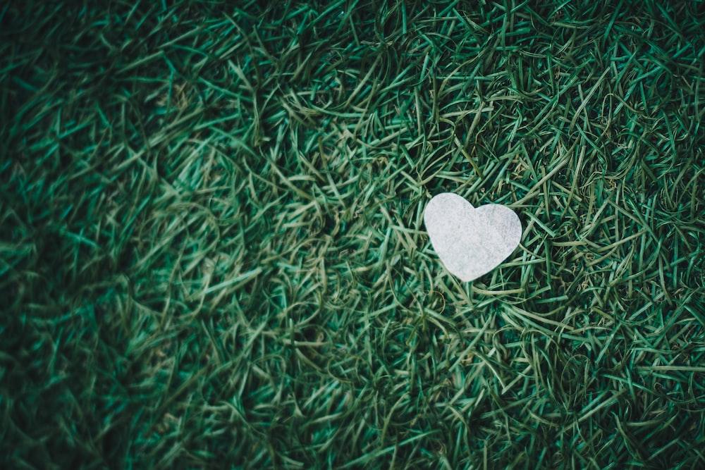 gray heart decor on green grass