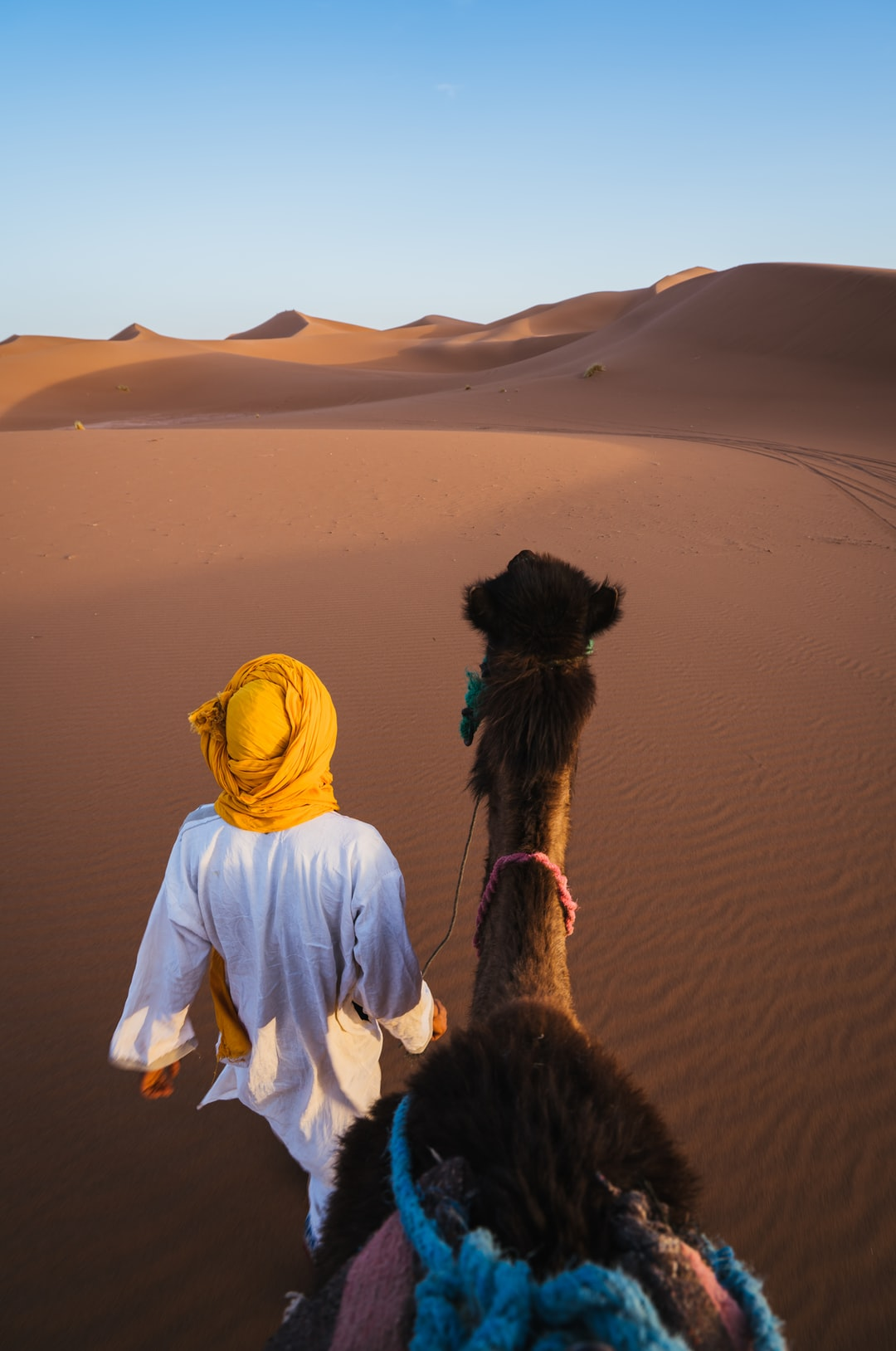man walking on desert with camel