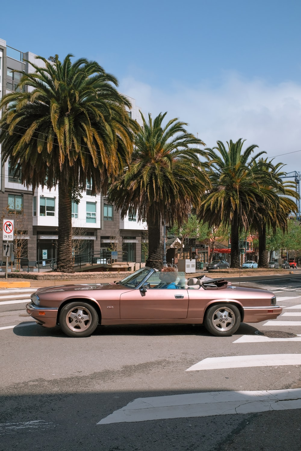 Jaguar Highway Vintage Car And Palm Tree Hd Photo By Josh Edgoose