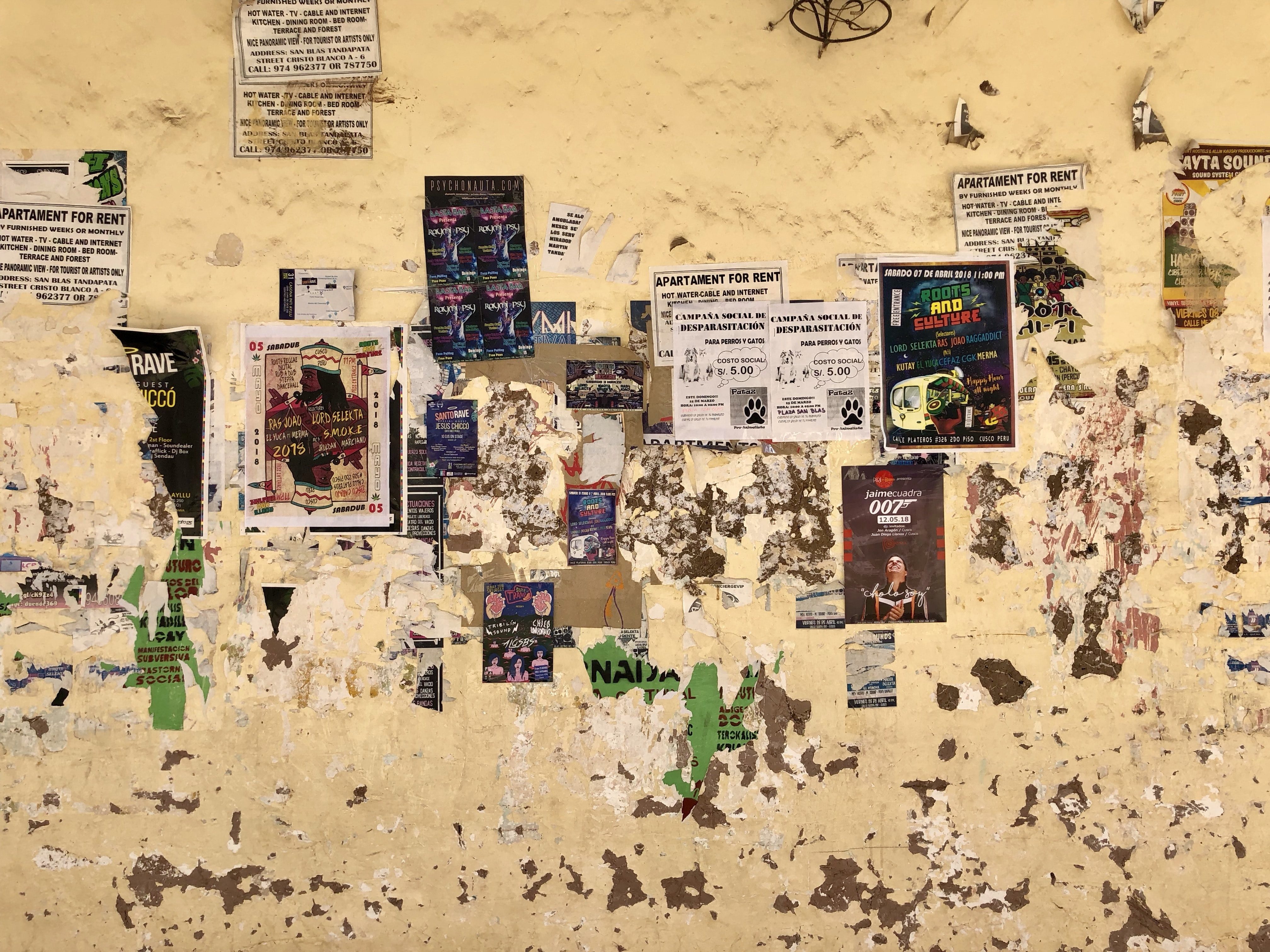 assorted posters on brown wall