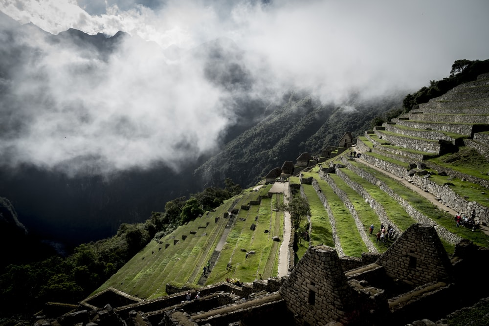 step vegetation landscape under white clouds at daytime