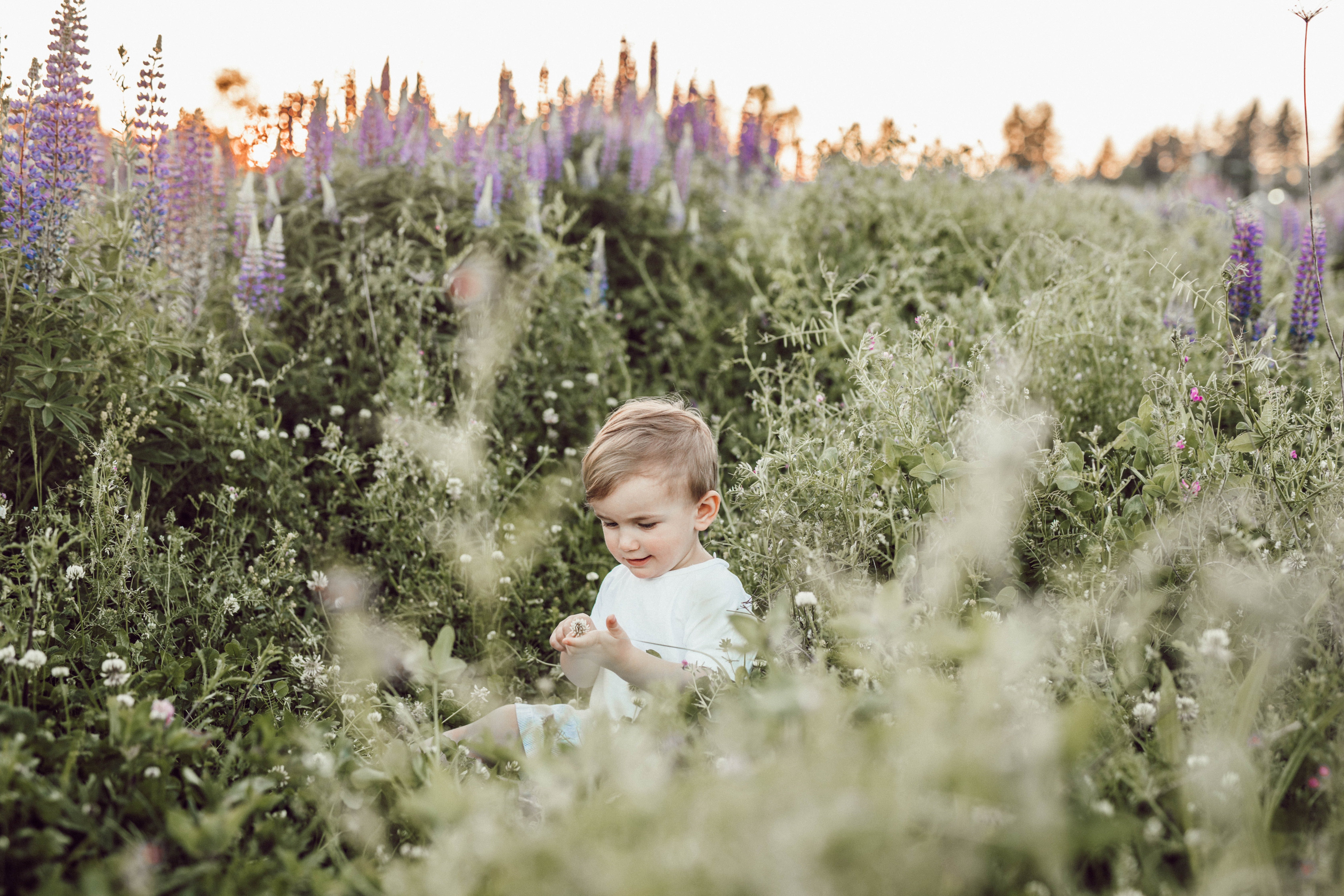child surrounded by plants