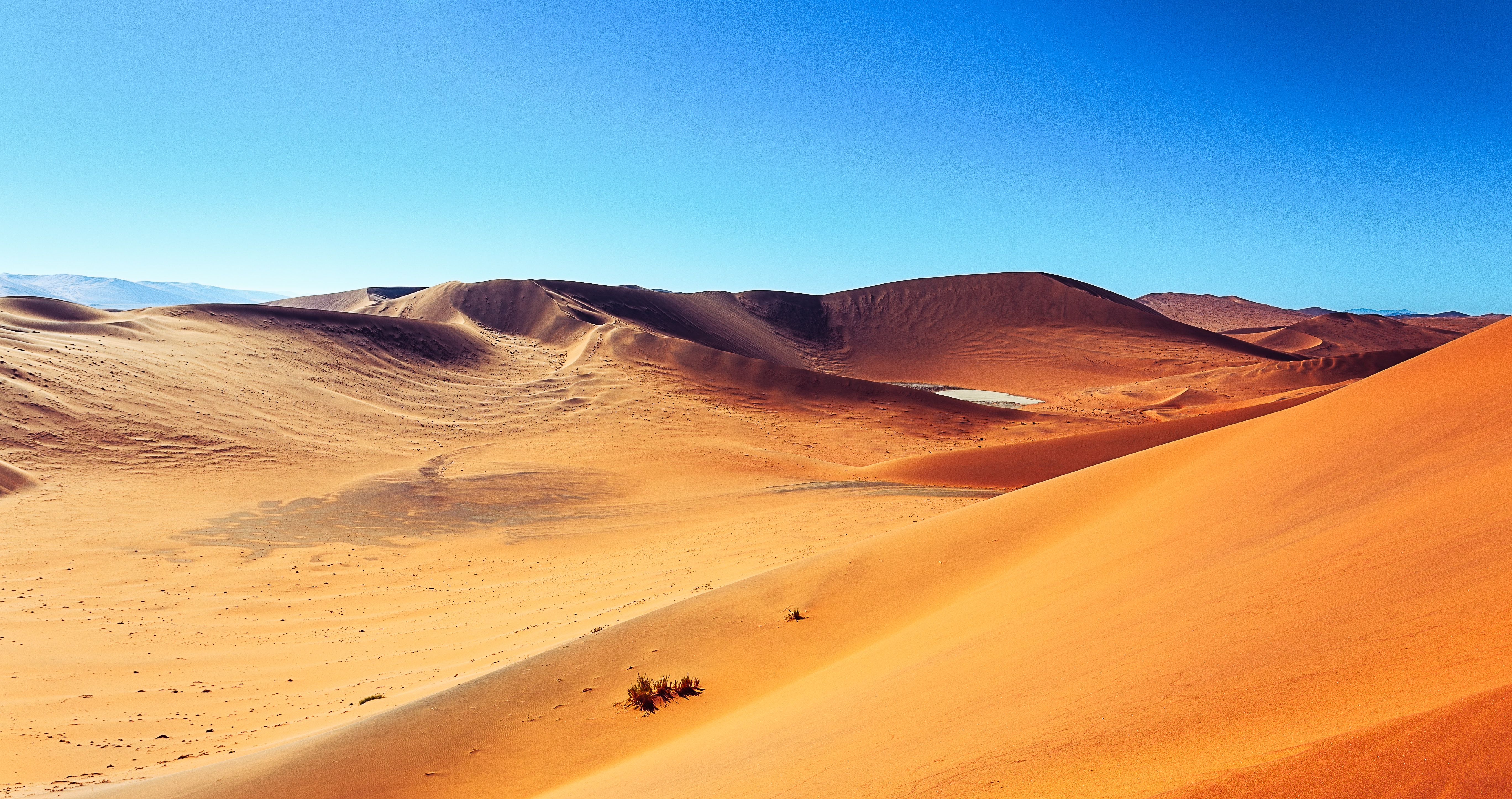 landscape photography of desert