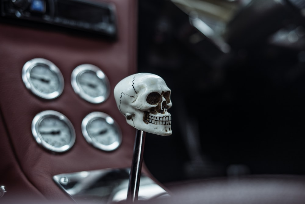 shallow focus photography of skull