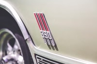 390 emblem photo