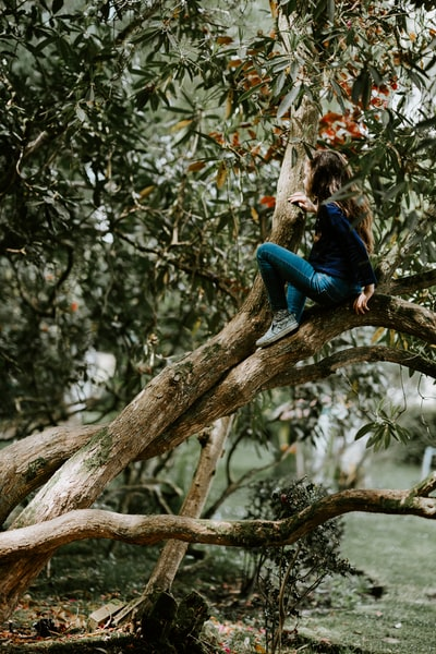 girl sitting on tree branch