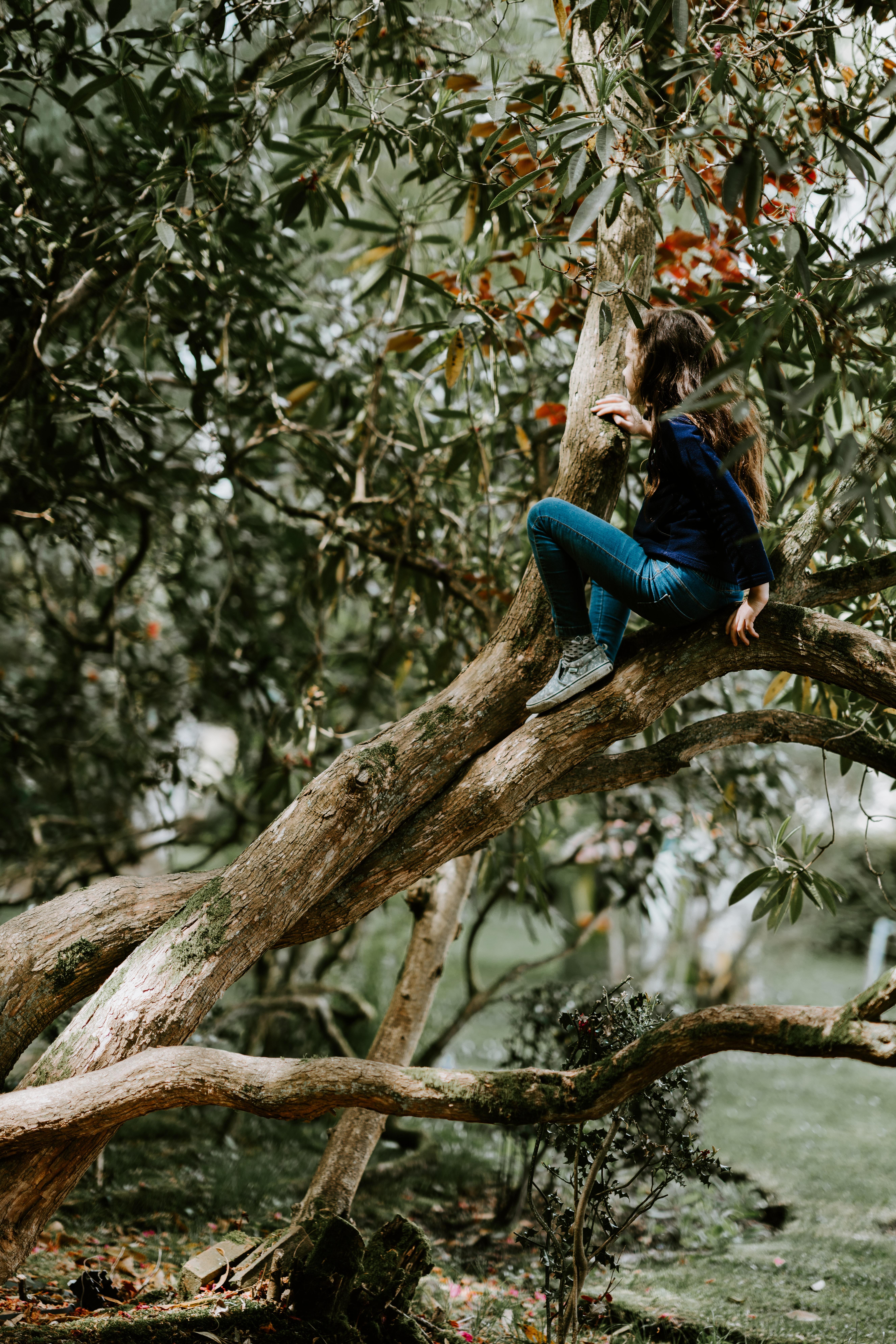 girl sitting on tree branch