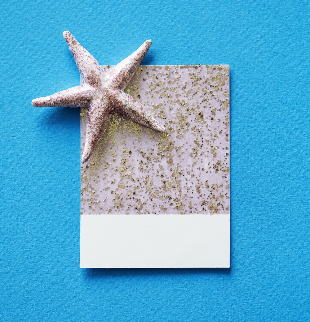 Greeting Card Pictures Download Free Images On Unsplash