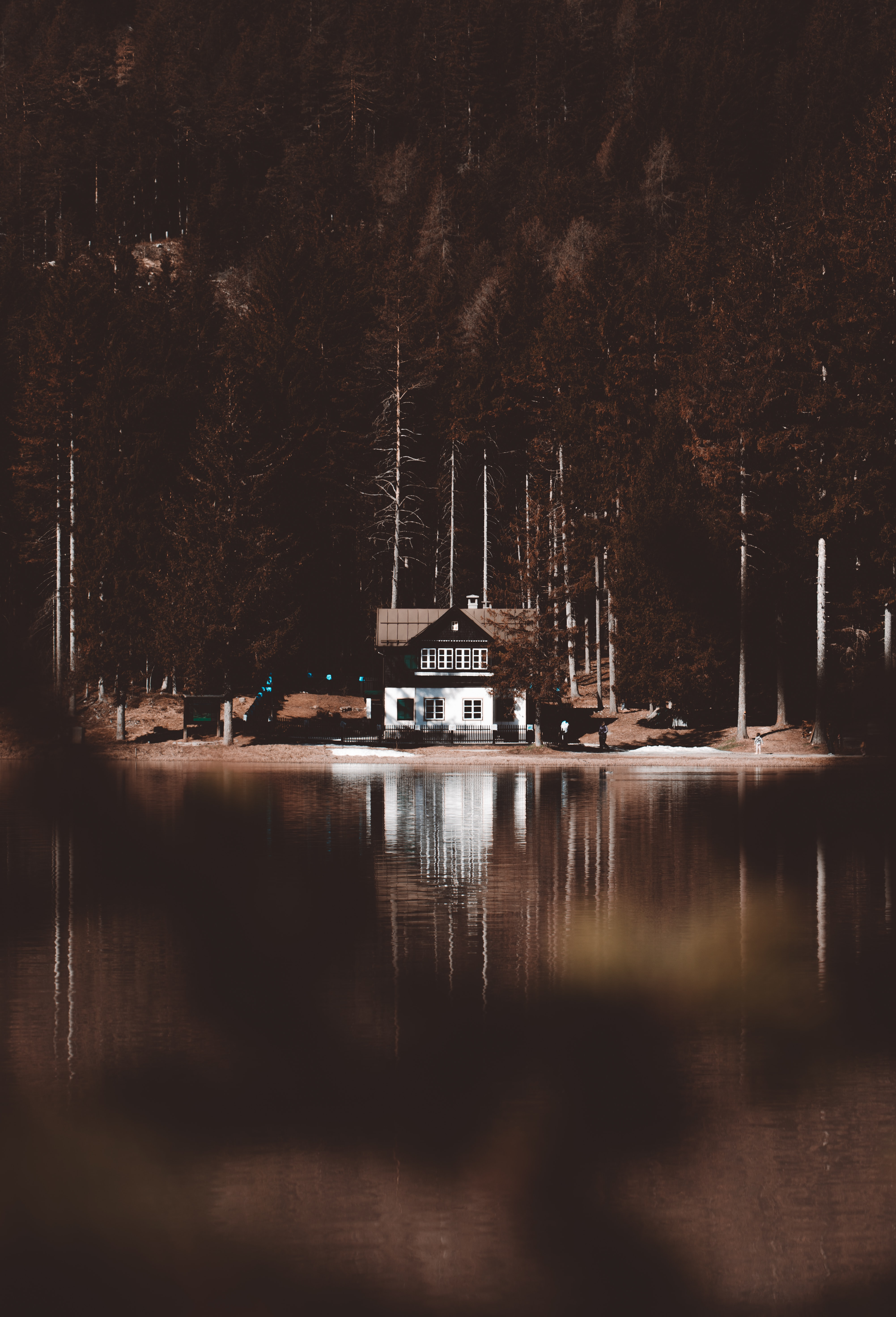 photo of house near body of water