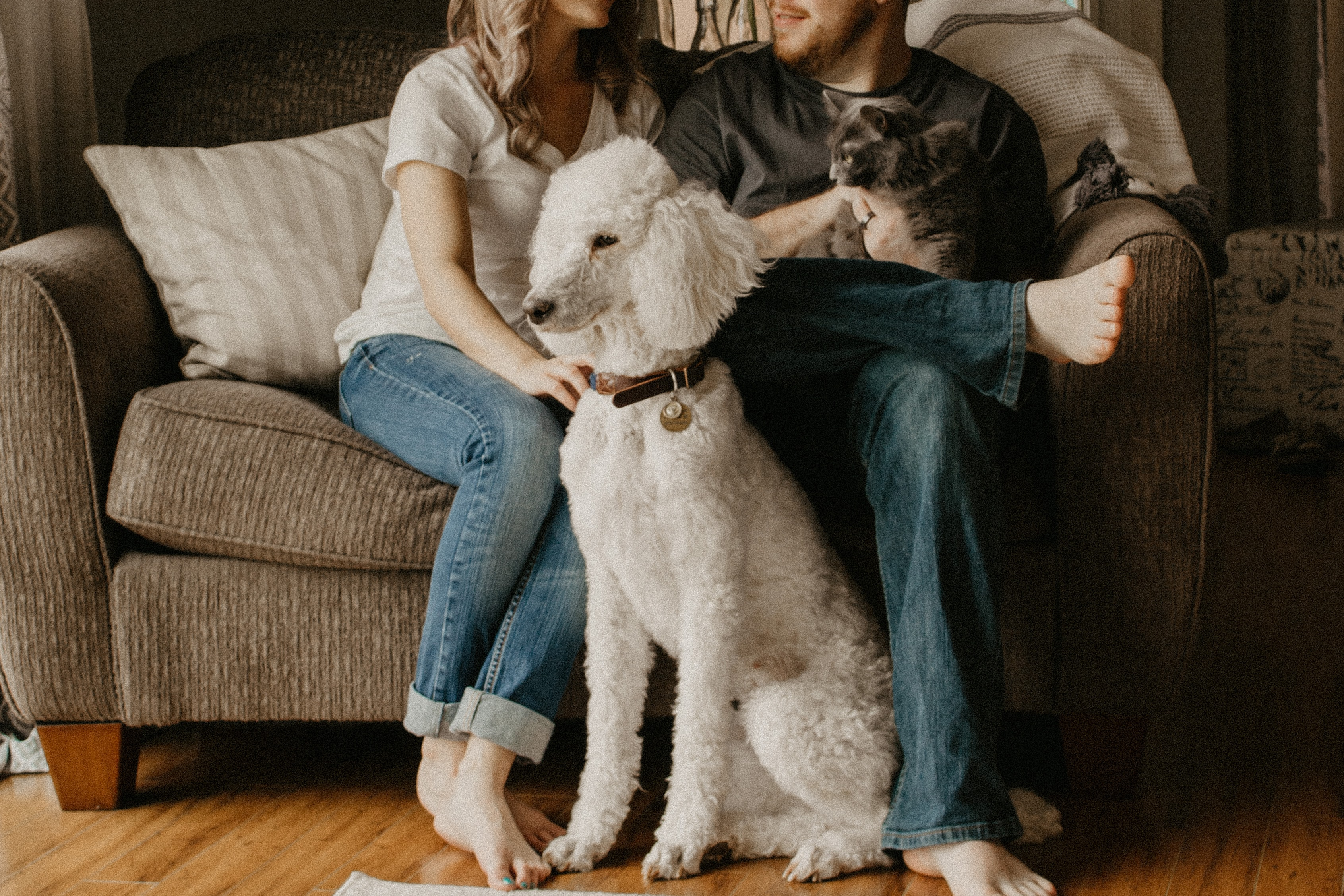 couple sitting on sofa beside dog inside room