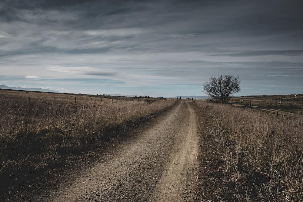 roadway