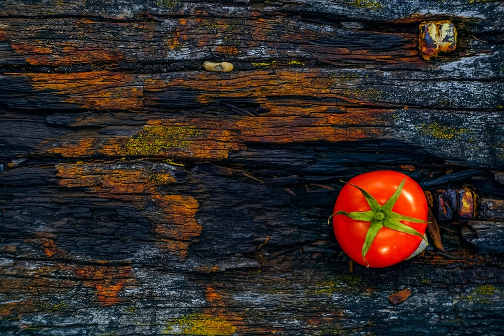 red tomato on brown log