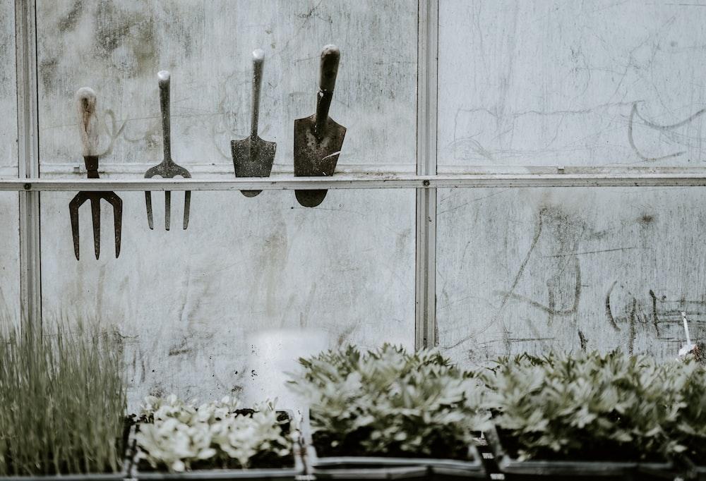 black cement trowels placed on near window