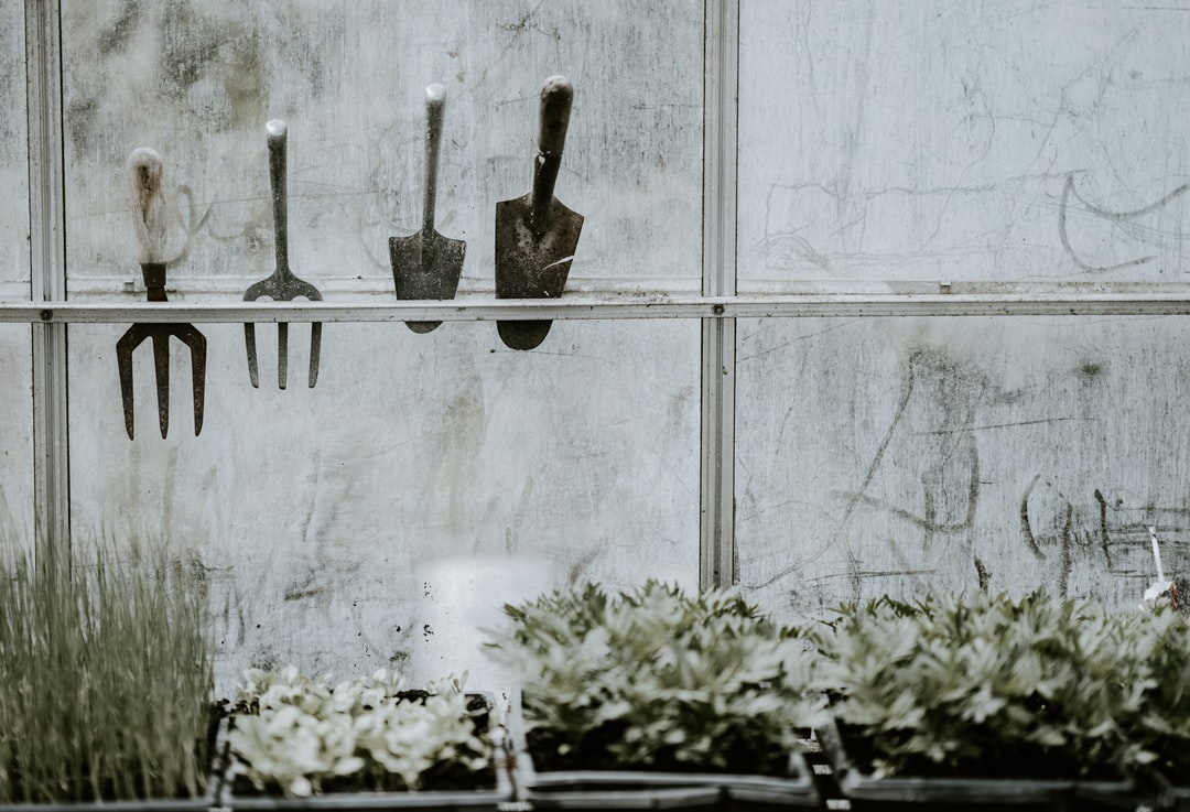 Garden tools in a greenhouse / glasshouse