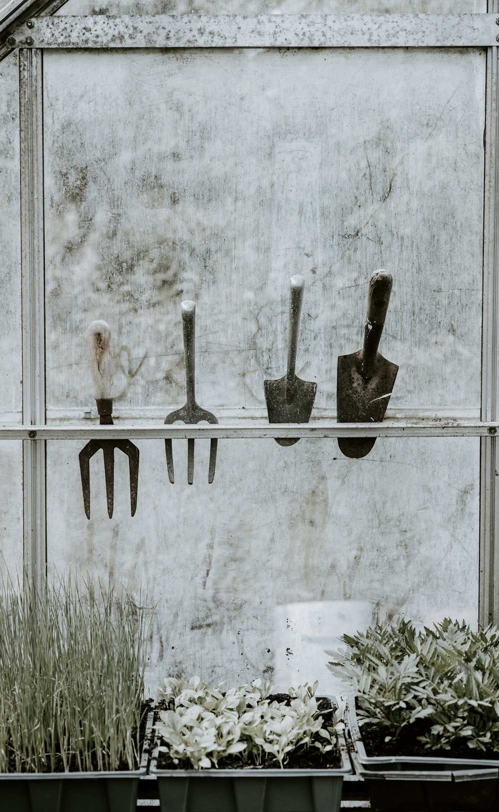 four handheld gardening tools on rack