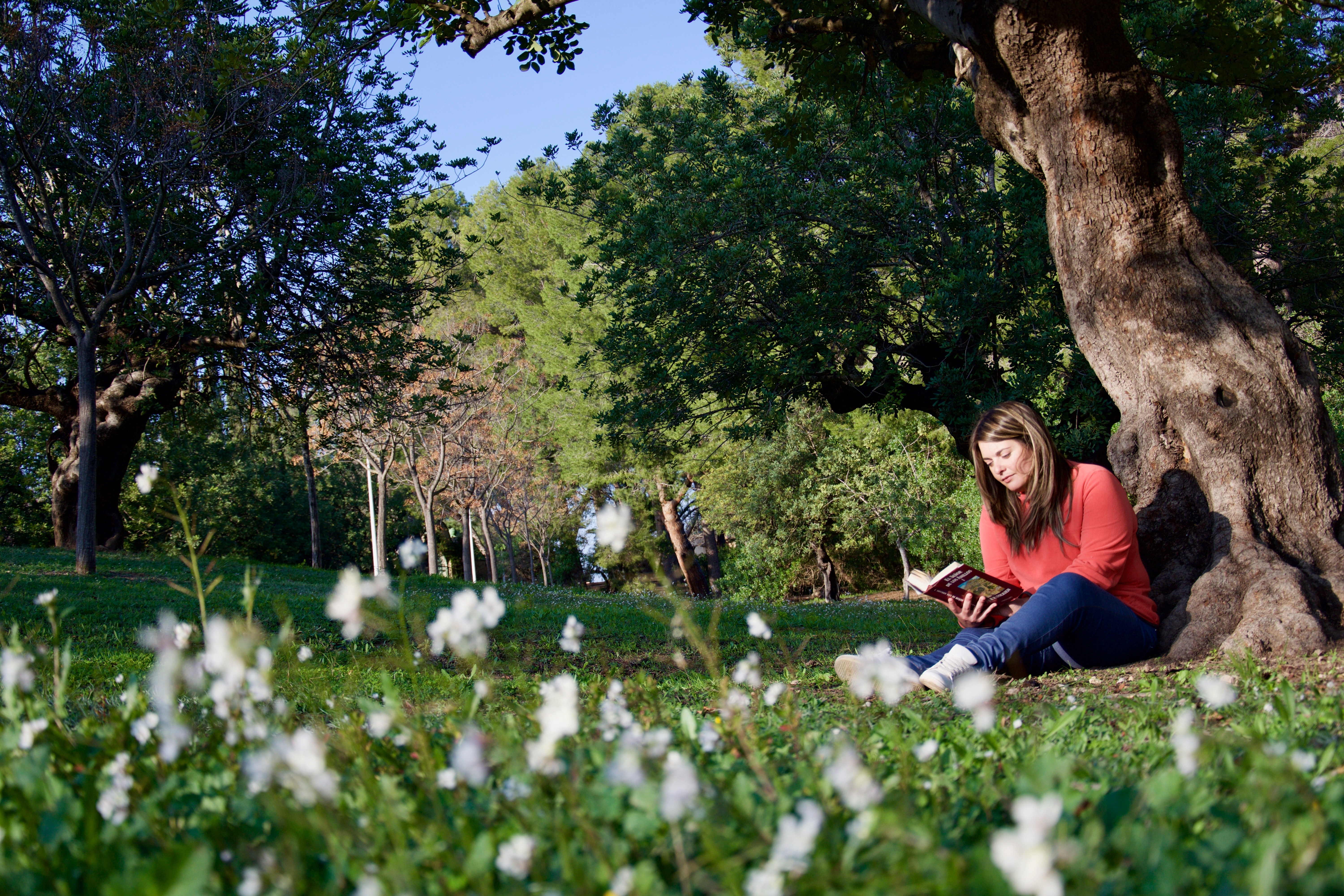 woman reading while sitting beside tree
