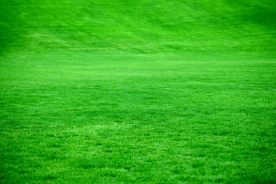 A large open green grassy area at a local sports park.