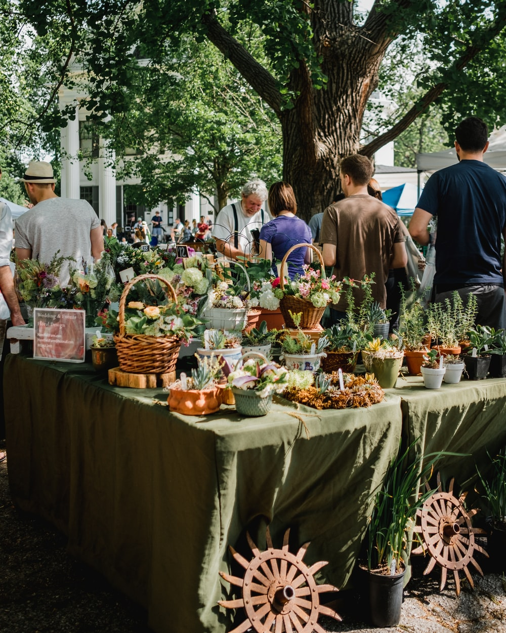 people beside assorted plants on table