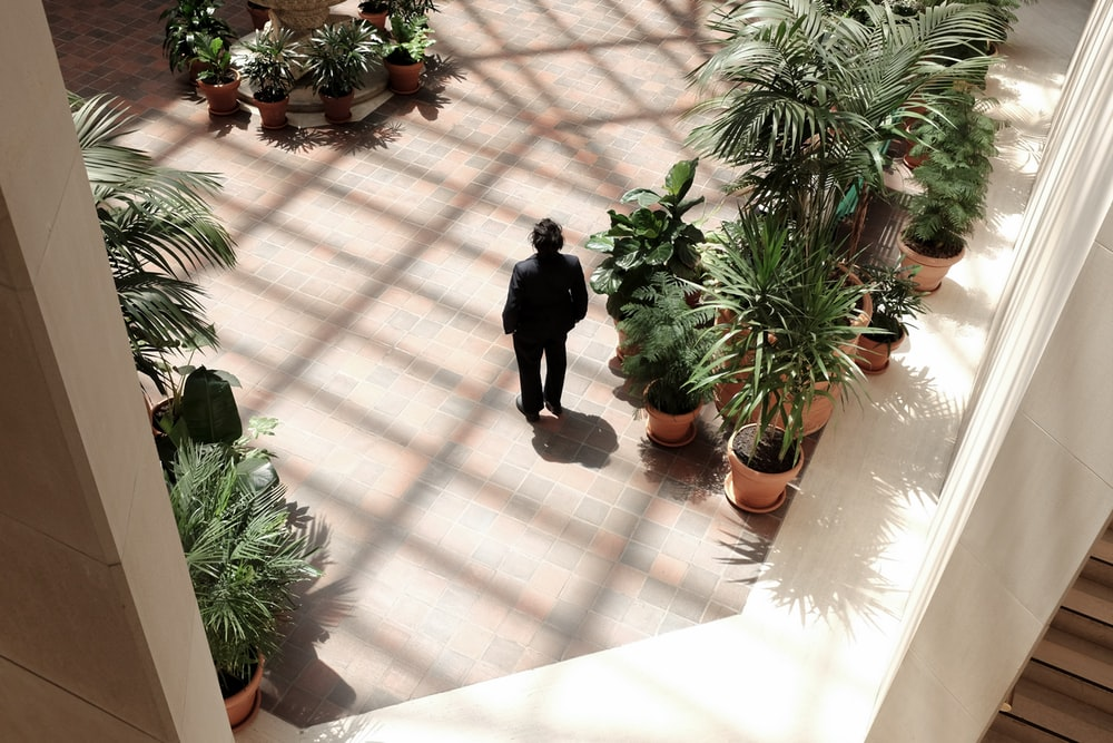person standing on plants