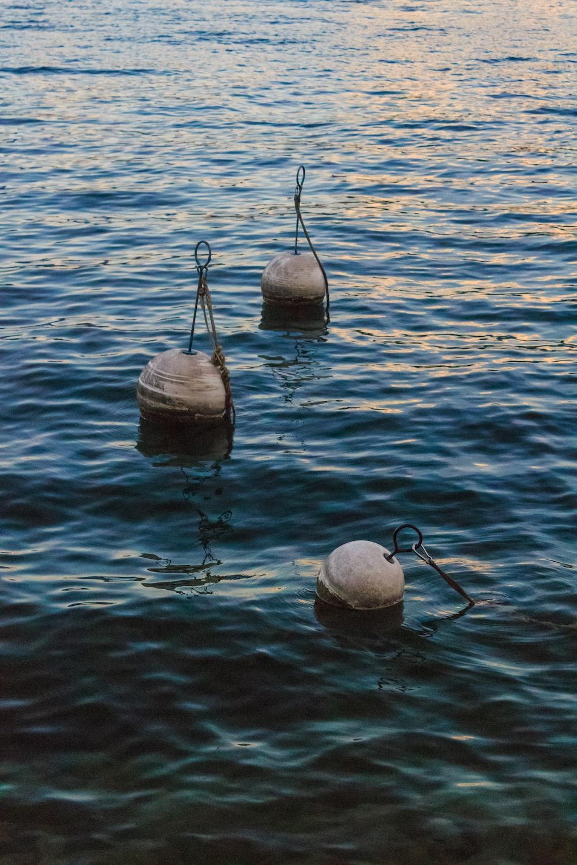 tree buoy balls on body of water