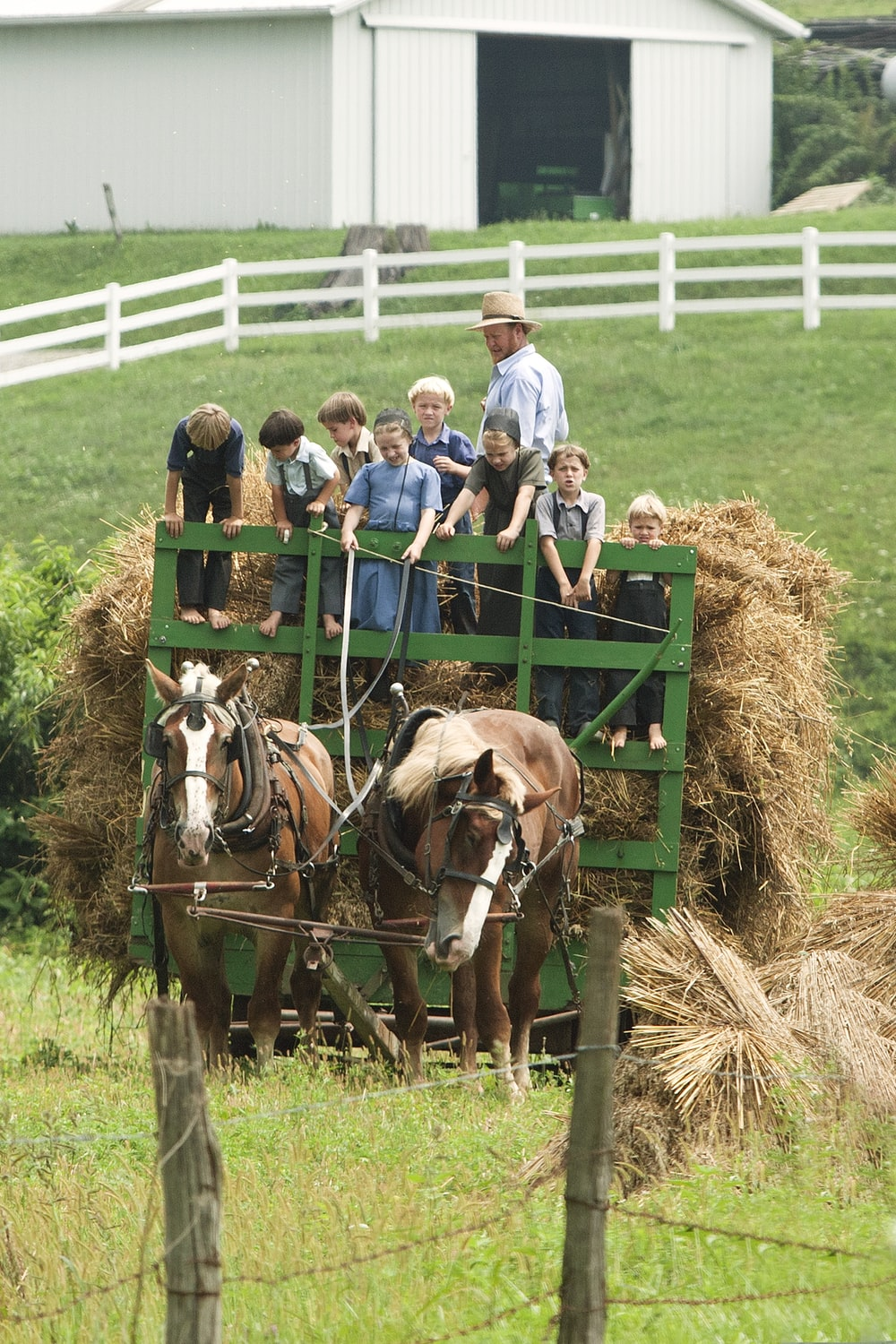 children riding carriage