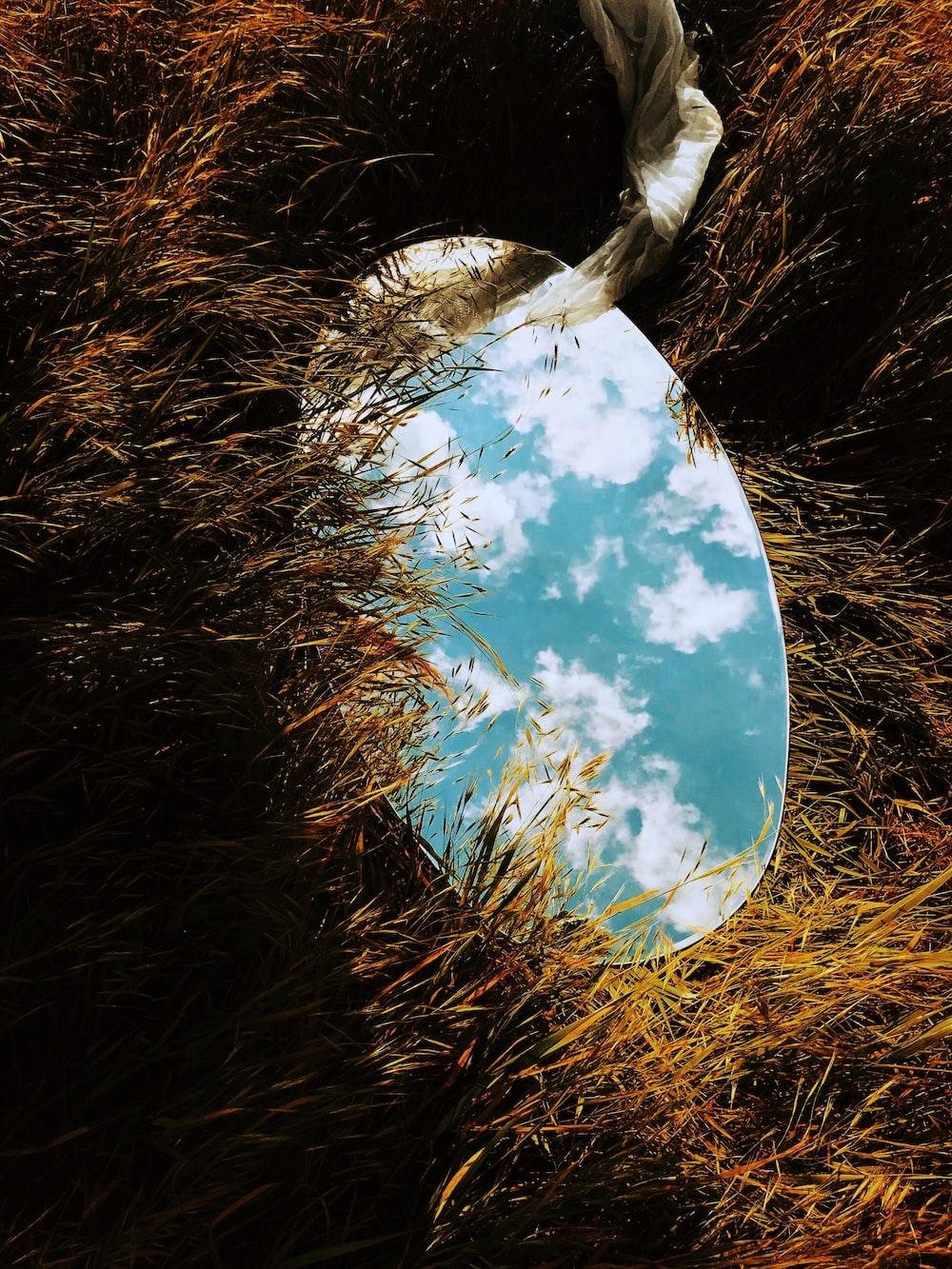 round mirror on grass