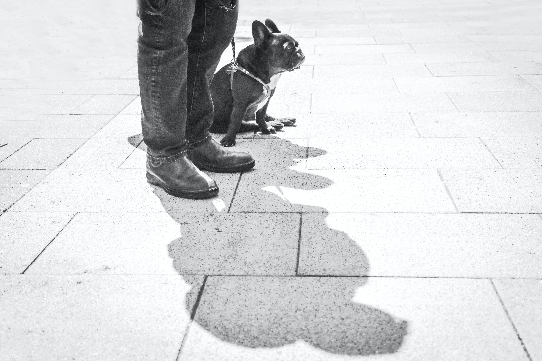 person standing outside beside short-coated black dog