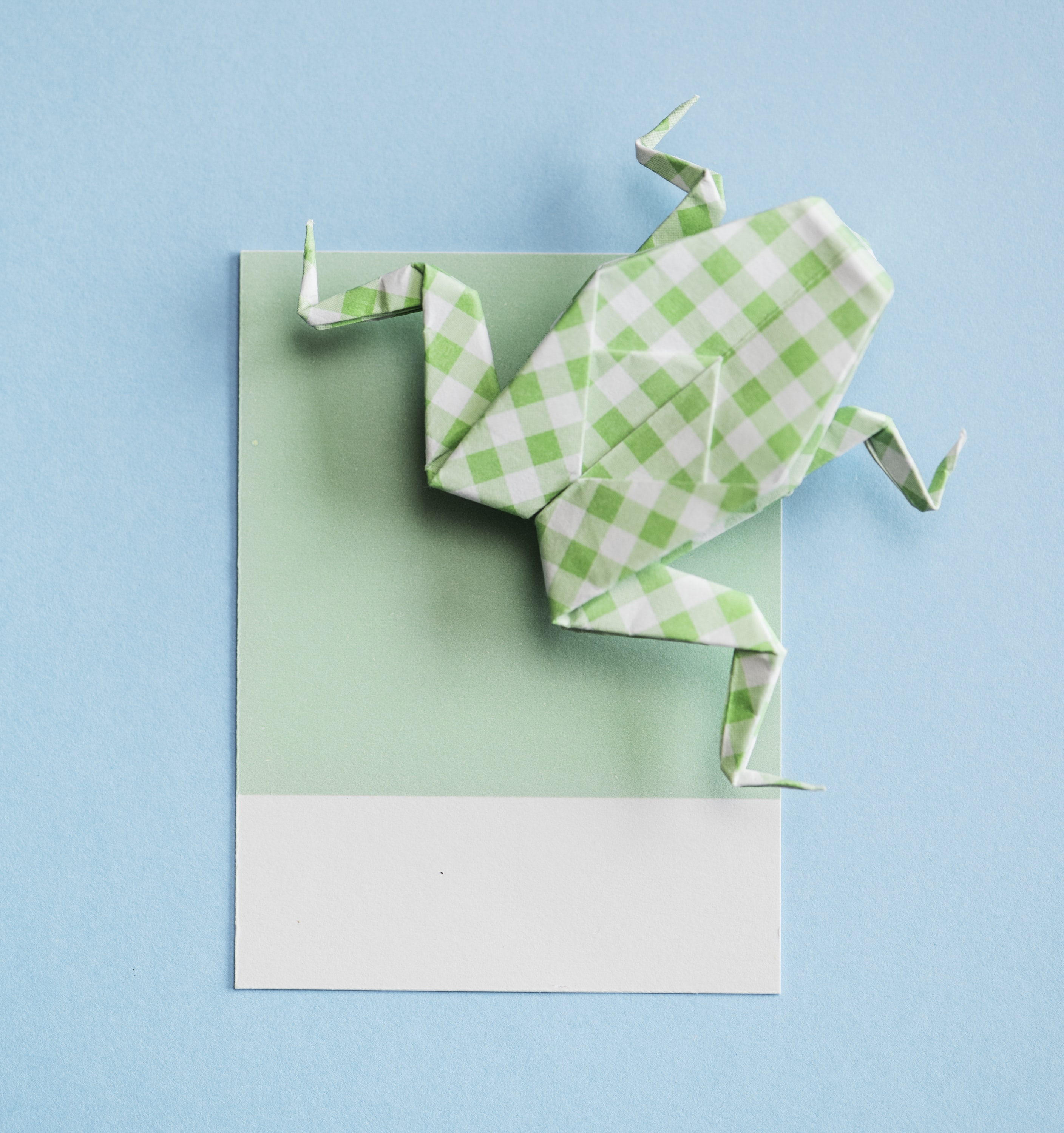green and white paper frog origami