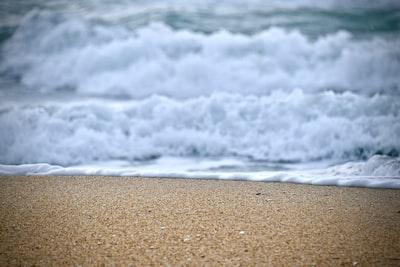 close-up photo of seashore during daytime