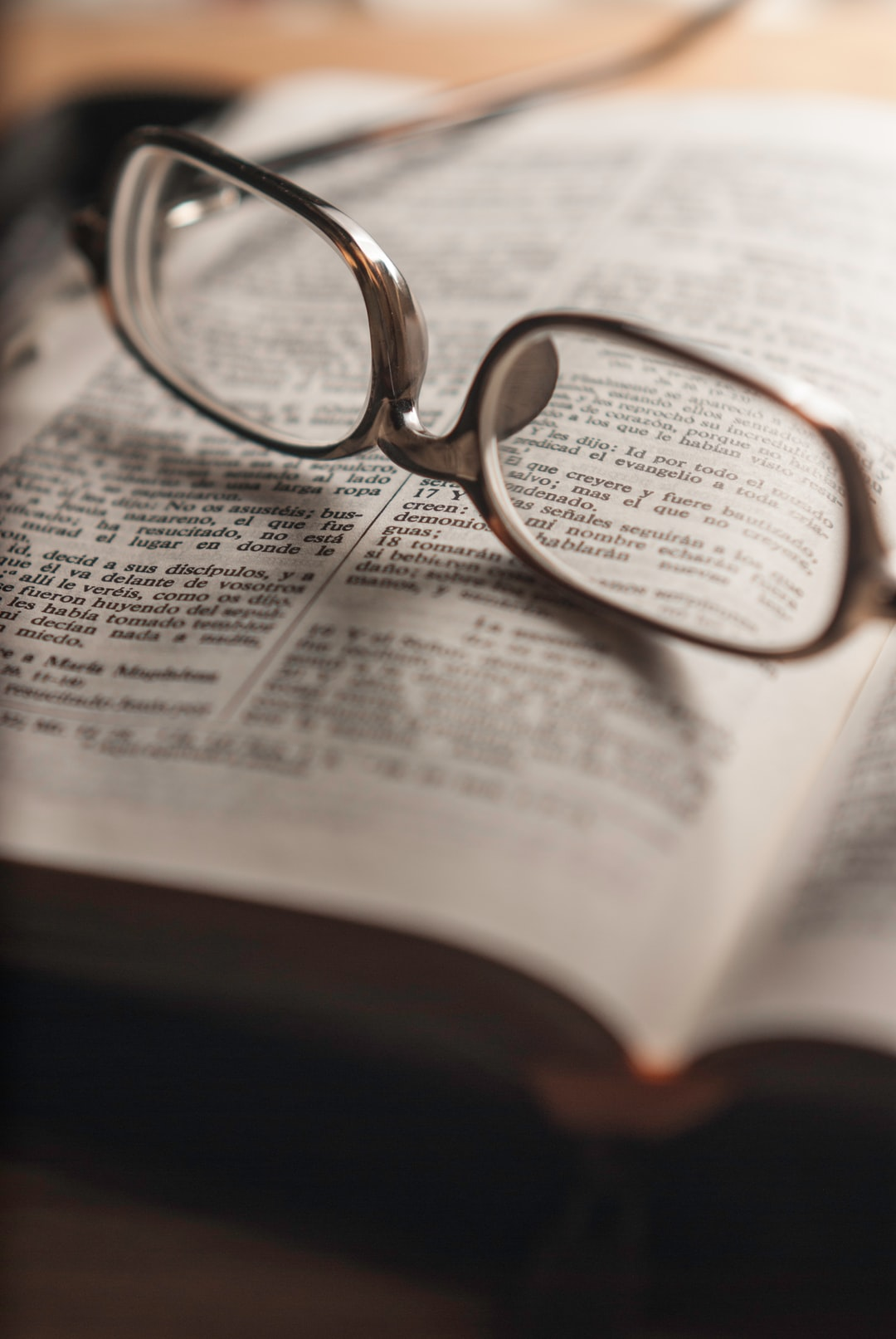 Buscaba representar la Misión del Evangelio, en Marcos 16:15, y puse este texto dentro de los lentes.