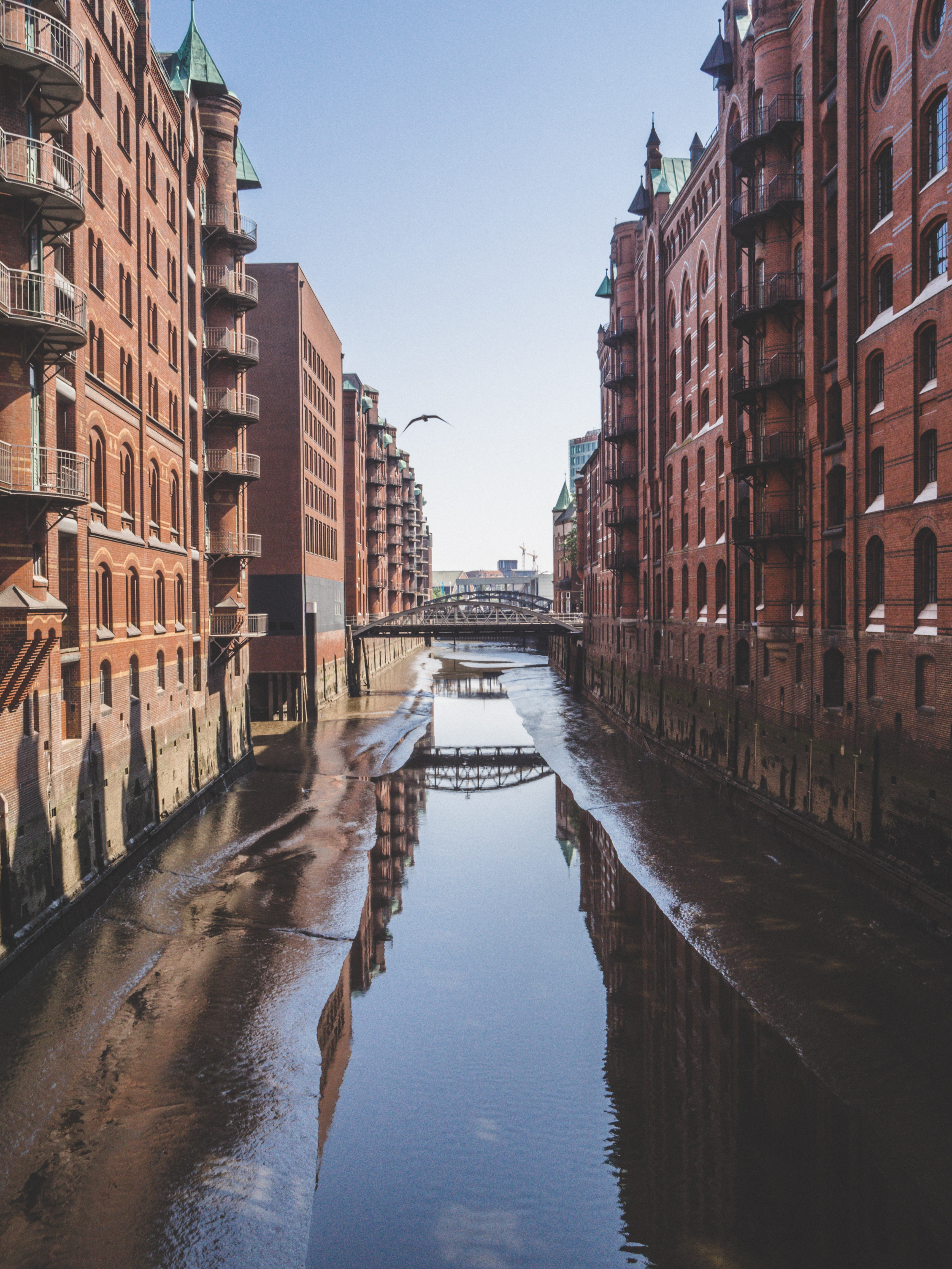 body of water at middle of concrete buildings