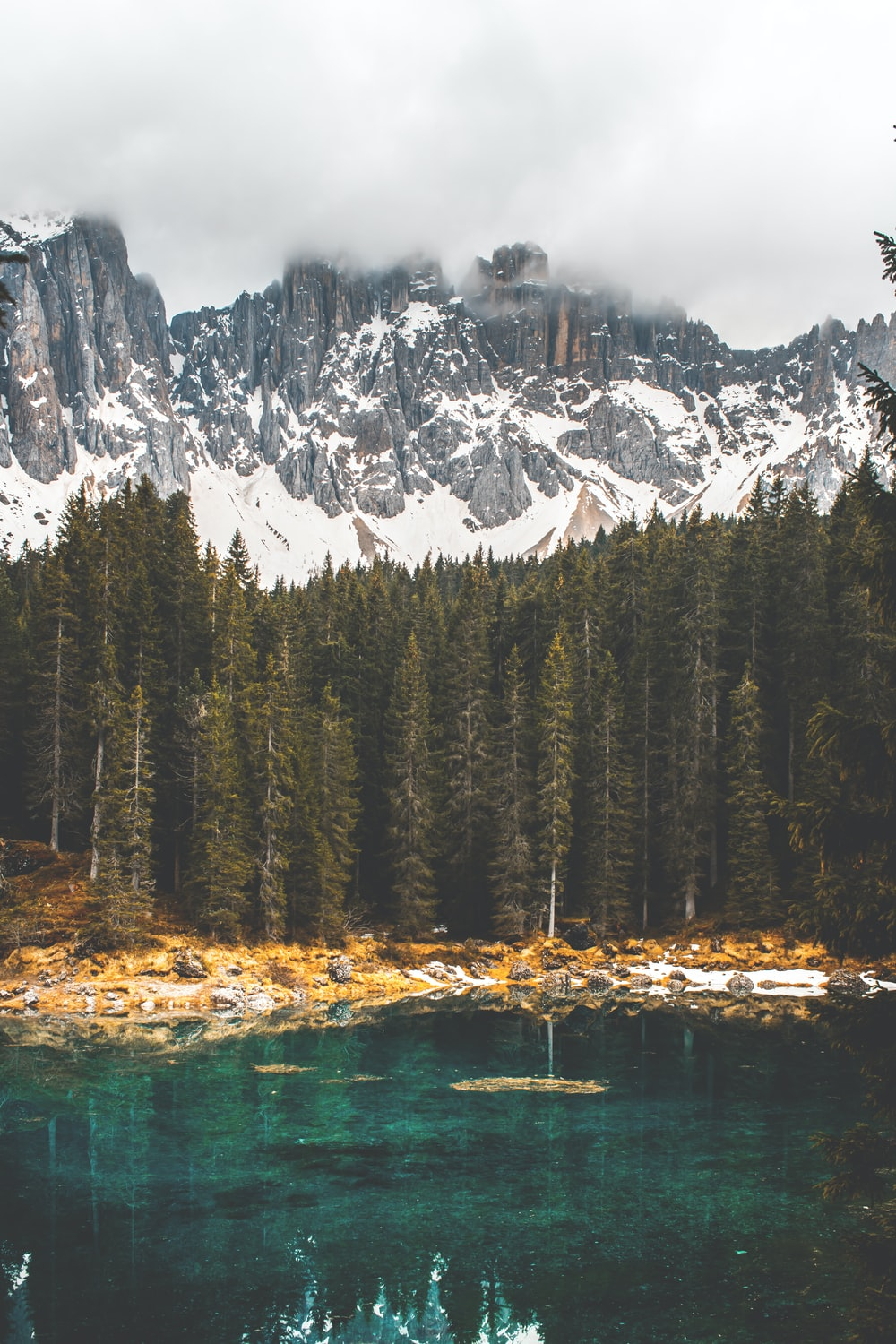 body of water near pine trees with snow-capped mountain at distance