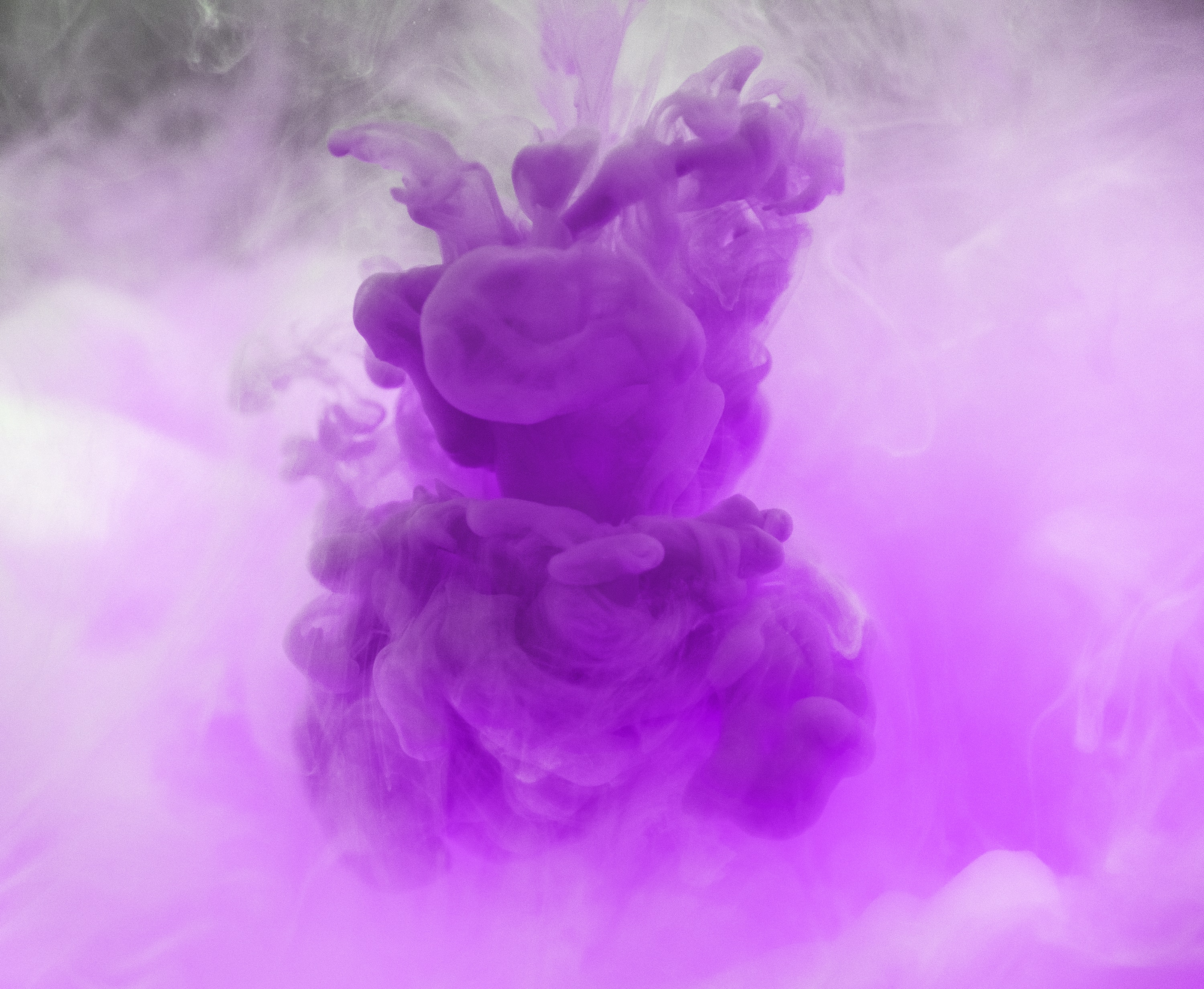 Purple Pictures Hq Download Free Images On Unsplash