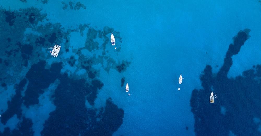aerial photo of sailboats