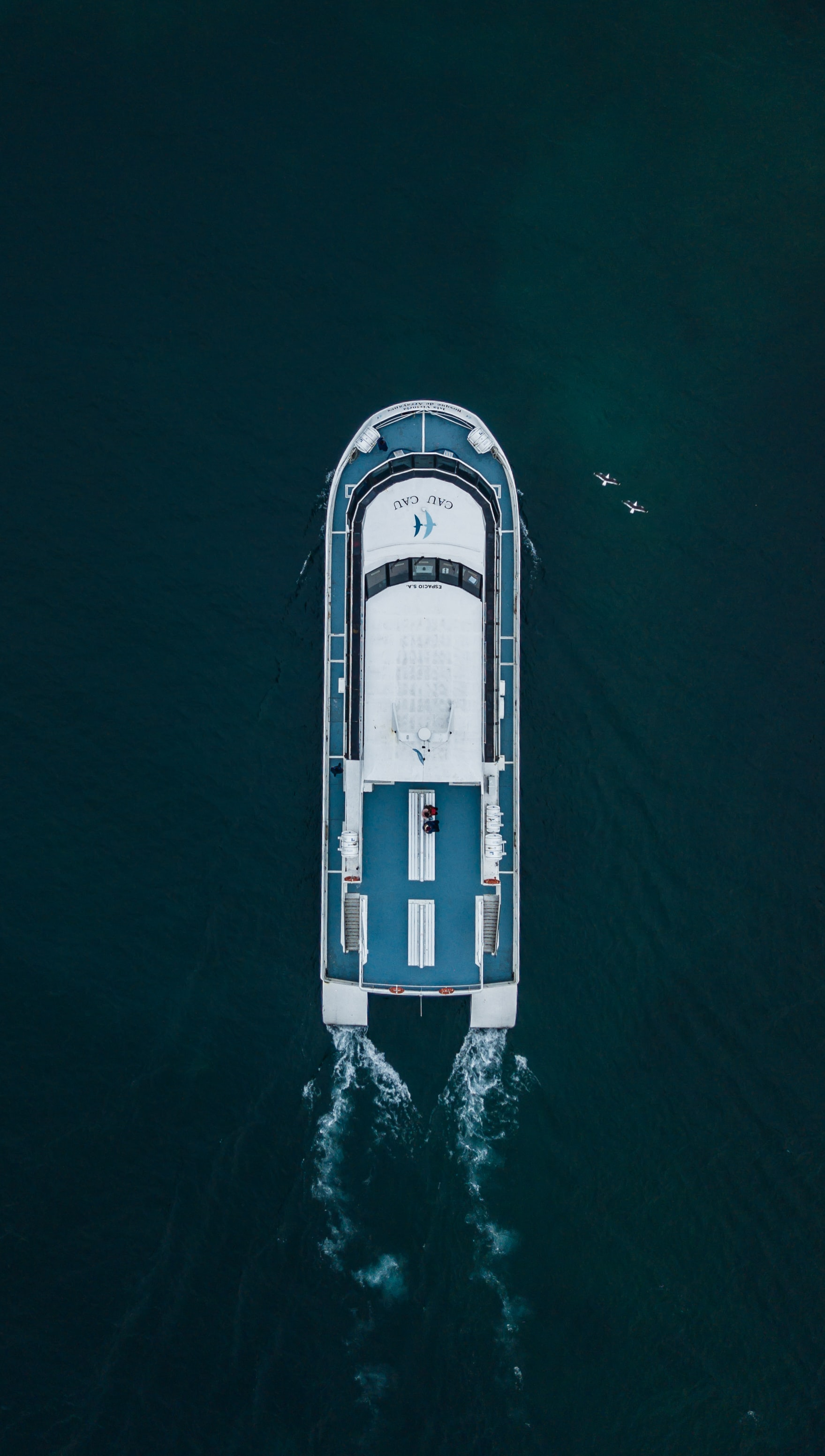 aerial photo of yacht on body of water during daytime