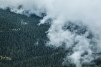 aerial view photography of foggy forest