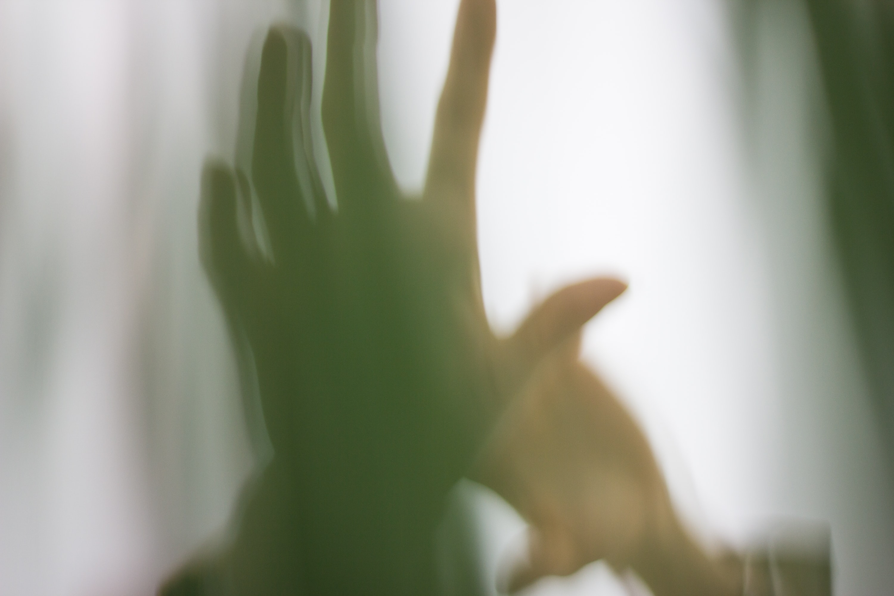 silhouette of person's hand