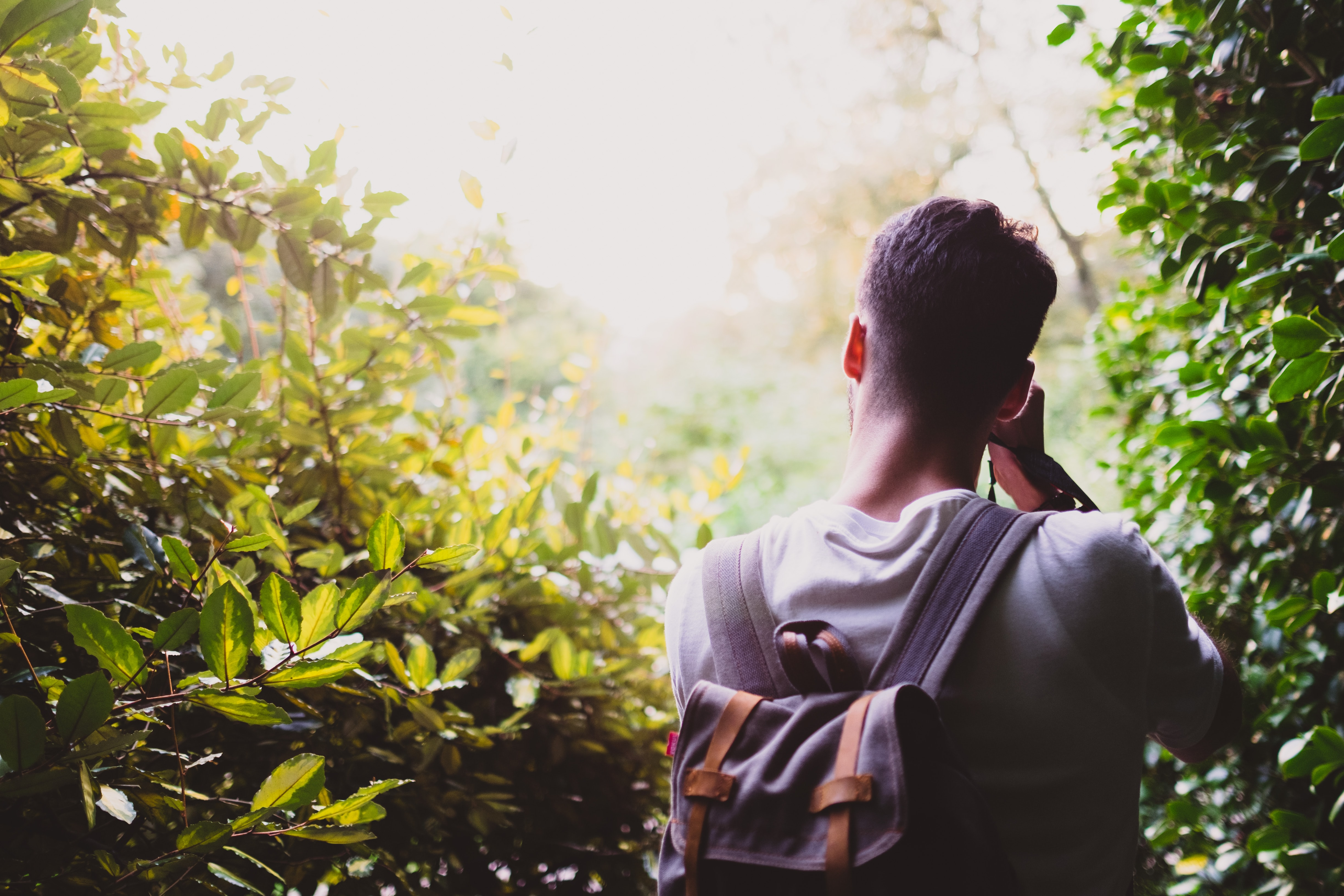 man carrying gray backpack between green leafed plant