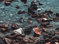 brown rock stone on body of water